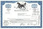 Brandywine Sports Inc.