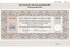 Schulte-Schlagbaum AG
