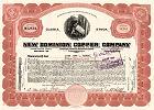 New Dominion Copper Company