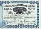 Idaho Consolidated Gold & Silver Mining Company