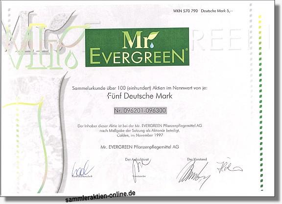 Mr. Evergreen