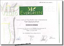 Mr. Evergreen