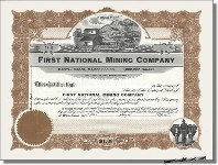 First National Mining Company